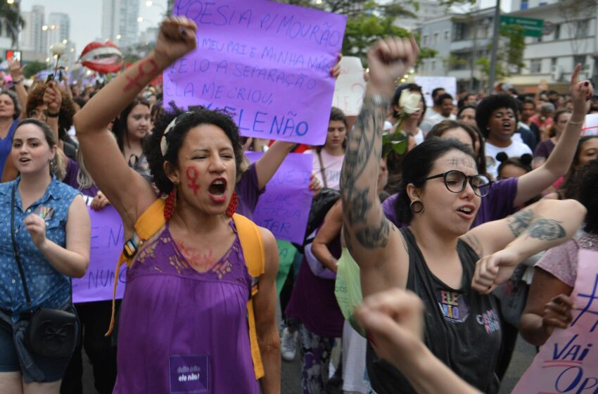 The feminist movement in Brazil and the women who influenced it