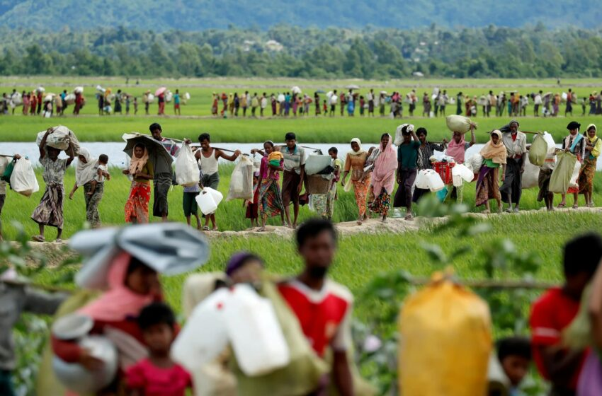 Rohingya crisis in the Asian subcontinent